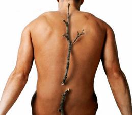 El diagnóstico de la osteoporosis