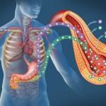 Menopausia: Síntomas y Diagnostico