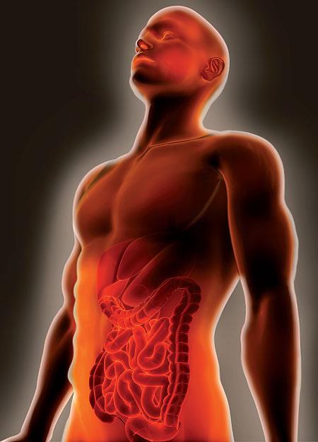 Trasplante hepático de donante vivo
