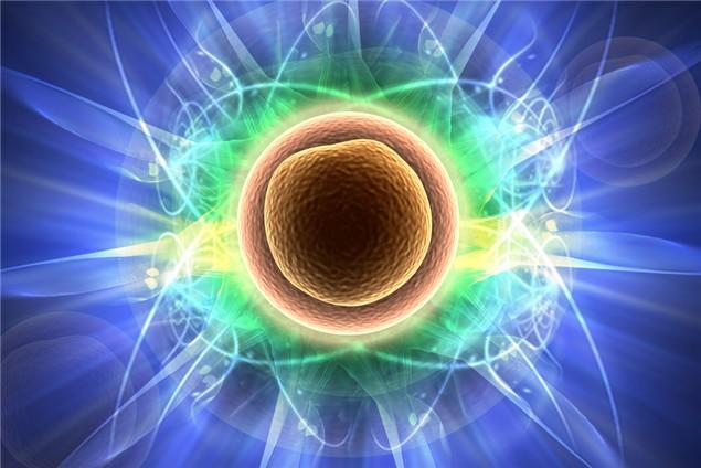 Células madre: aplicaciones actuales