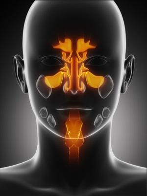 Afinar el diagnóstico de alergias mediante microarray