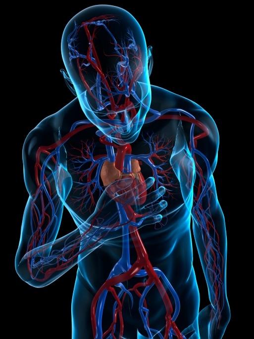 Arritmias cardiacas, tratamiento con crioablación