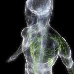 Cómo determinar el porcentaje de grasa corporal