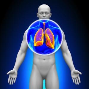fibrosispulmonar