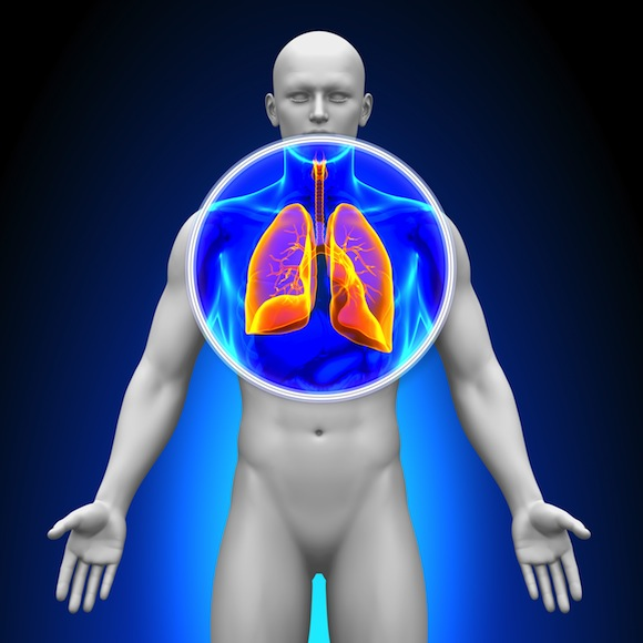 Fibrosis pulmonar y tratamientos para combatirla