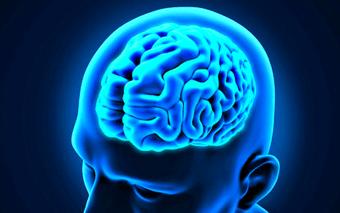 ¿Qué es la memoria? como podemos mejorarla