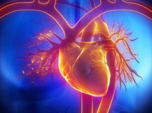ventrículo artificial