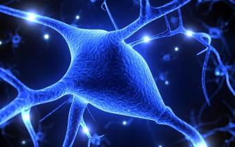Nuevos retos para el tratamiento de la epilepsia