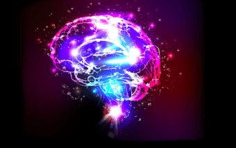 Claves para mantener tu cerebro joven
